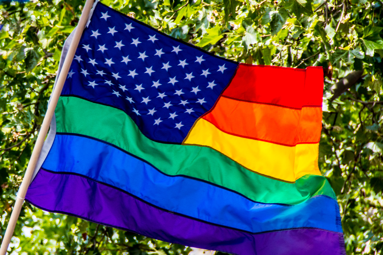 Queer USA Flag
