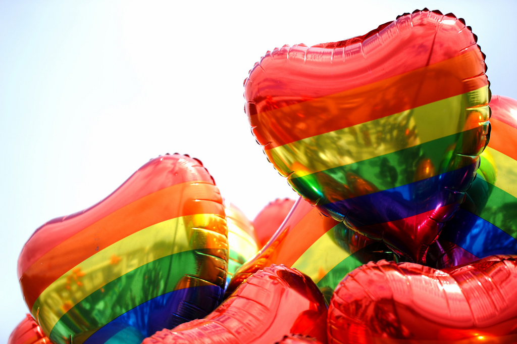Guillaume Paumier Gay pride 013 (CC BY 2.0)via Flickr